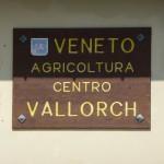 Veneto Agricoltura (Regione Veneto)